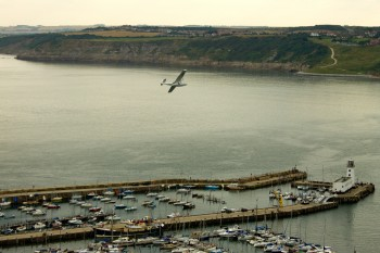 The seaplane circles overhead without landing