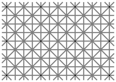 An Extinction Illusion