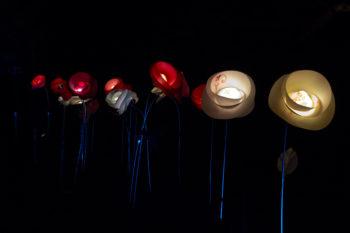 Light up flowers