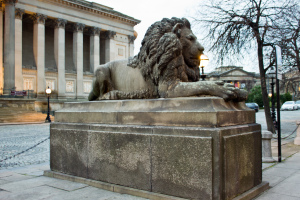 One of the lions outside St George's Hall
