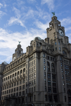 The Royal Liver Building catches the sun